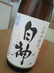 100106_shirakami.jpg
