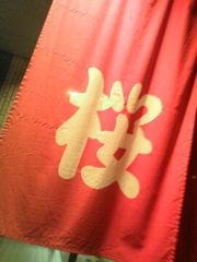 111106_sakura.jpg